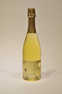 Muscatille, pétillant du Domaine de la Plaine, producteur de muscat de Frontignan