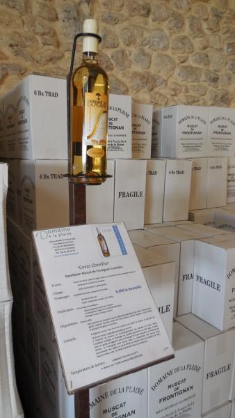 caveau du Domaine de la Plaine, producteur de muscat de Frontignan 2