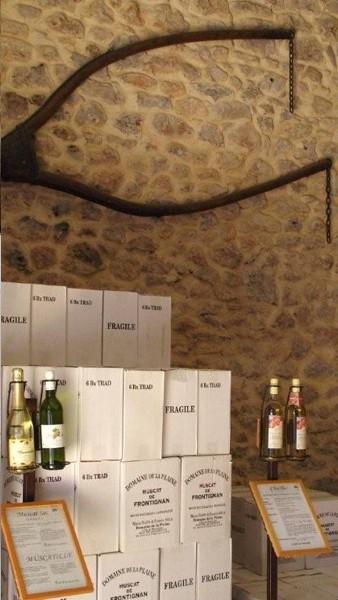 caveeau du Domaine de la Plaine, producteur de muscat de Frontignan
